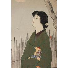 Takeuchi Keishu: Beauty and Cherry Blossoms - Robyn Buntin of Honolulu