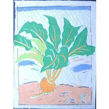 Oda Mayumi: Green Gulch Seed Catalogue - Golden Beet (44/50) - Robyn Buntin of Honolulu