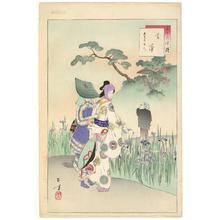 Mizuno Toshikata: Iris Garden - Robyn Buntin of Honolulu