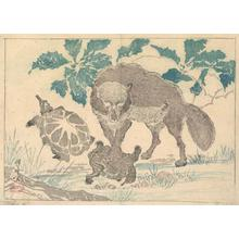 Kawanabe Kyosai: Wolf with Turtles - Robyn Buntin of Honolulu