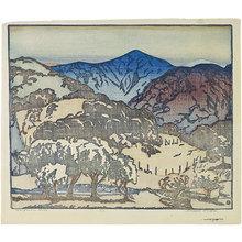 Anders Gustave Aldrin: California Hills - darker palette - Scholten Japanese Art