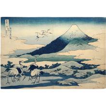 Katsushika Hokusai: Thirty-Six Views of Mt. Fuji: Umezawa Hamlet-fields in Sagami Province (Fugaku sanju-rokkei: Fugaku Sanju-rokkei: Soshu Umezawa hidari [zai]) - Scholten Japanese Art