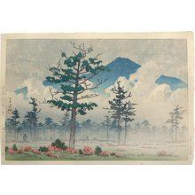 川瀬巴水: Senjo Plain, Nikko (Nikko Senjogahara) - Scholten Japanese Art
