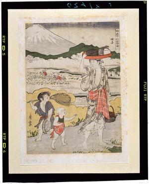 鳥居清長の画像 p1_22