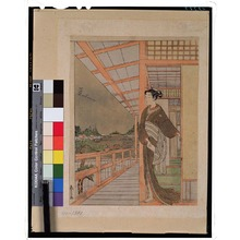 Shiba Kokan: - Tokyo National Museum