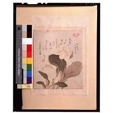 Kubo Shunman: - Tokyo National Museum