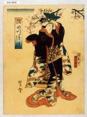Utagawa Yoshitoyo: 「隅田川続俤」「法界坊」「大谷友松」 - Waseda University Theatre Museum