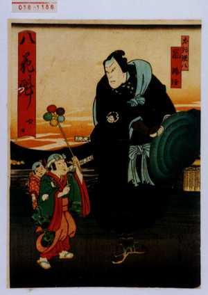 Utagawa Kunikazu: 「八花魁 四口」「犬飼現八 嵐璃☆」 - Waseda University Theatre Museum