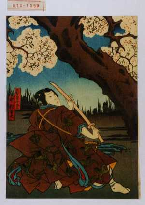 Utagawa Kunikazu: 「名古屋小山三 中村玉七」 - Waseda University Theatre Museum