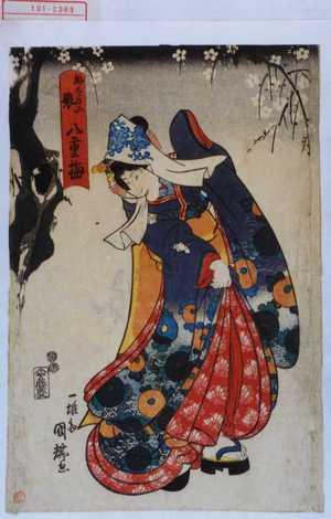 Utagawa Kuniteru: 「助太夫娘八重梅」 - Waseda University Theatre Museum
