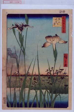 Utagawa Hiroshige: 「名所江戸百景」「堀切☆花菖蒲」 - Waseda University Theatre Museum