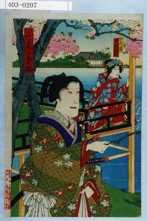 Toyohara Kunichika: 「ひな鶴 中村福助」「さだか 尾上菊五郎」 - Waseda University Theatre Museum