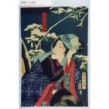 Toyohara Kunichika: 「かん菊の田乃 沢村曙山」 - Waseda University Theatre Museum