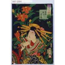 豊原国周: 「三十六花艸の内 時鳥」「高尾 尾上栄三郎」 - 演劇博物館デジタル