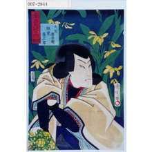 Toyohara Kunichika: 「三十六花艸の内 岩石蘭」「天竺徳兵衛 坂東彦三郎」 - Waseda University Theatre Museum