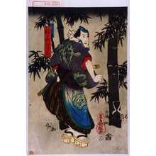 Utagawa Kuniteru: 「男女伊達競 鮫さや四郎三」 - Waseda University Theatre Museum