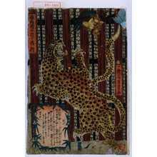 Utagawa Yoshitoyo: 「西両国に於て興行」 - Waseda University Theatre Museum