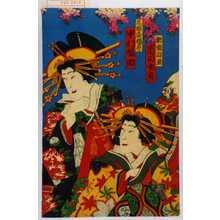 香朝桜: 「新造白玉 市川女寅」「三浦屋揚巻 中村福助」 - Waseda University Theatre Museum