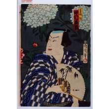 Toyohara Kunichika: 「☆ノ駒 中村芝翫」 - Waseda University Theatre Museum