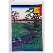 Utagawa Hiroshige: 「諸国名所百景」「信州桔梗の原」 - Waseda University Theatre Museum
