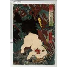Utagawa Yoshikazu: 「養和年中於木曽山四天王白猿退治図」 - Waseda University Theatre Museum