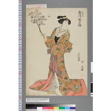 Utagawa Toyokuni I: 「定か 市川団之助」 - Waseda University Theatre Museum