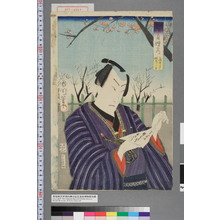 Toyohara Kunichika: 「江戸自慢の内 亀井戸梅屋しき」 - Waseda University Theatre Museum