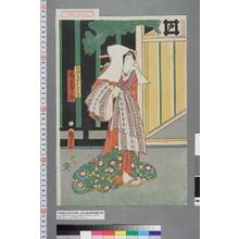 二代歌川国貞: 「五郎蔵女房さつき 尾上菊次郎」 - 演劇博物館デジタル