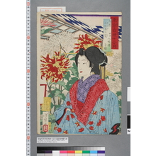 Tsukioka Yoshitoshi: 「東京自慢十二ヶ月」「九月 千駄木の菊 根津八幡楼 小桜」 - Waseda University Theatre Museum