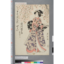 Utagawa Toyokuni I: 「十二ヶ月之内 やよい 市川団十郎 相勤申候」 - Waseda University Theatre Museum