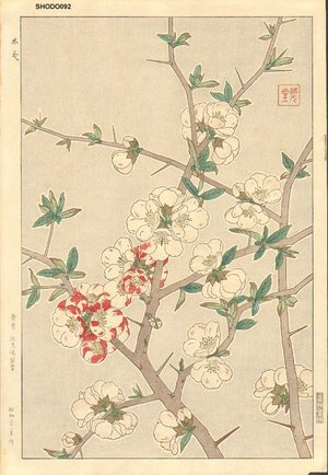 Kawarazaki, Shodo: Japanese quince - Asian Collection Internet Auction