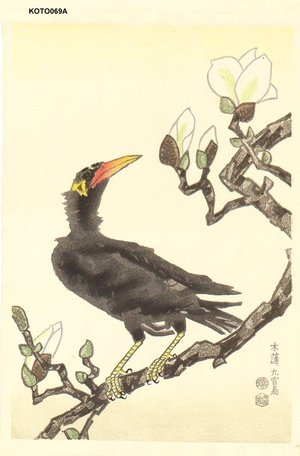Kotozuka Eiichi: Myna and Magnolia - Asian Collection Internet Auction