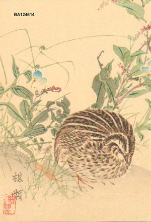 Kono Bairei: Quail and autumnal flowers - Asian Collection Internet Auction