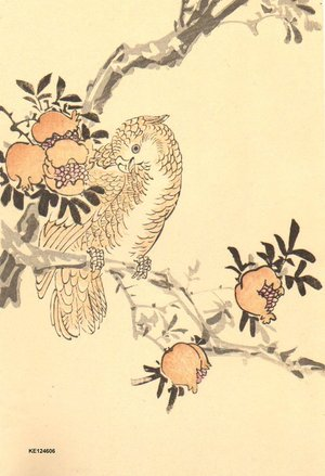 今尾景年: Parrot and pomegranates - Asian Collection Internet Auction