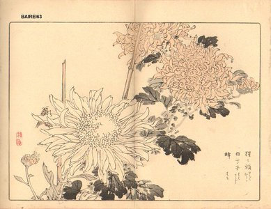幸野楳嶺: Chrysanthemum - Asian Collection Internet Auction