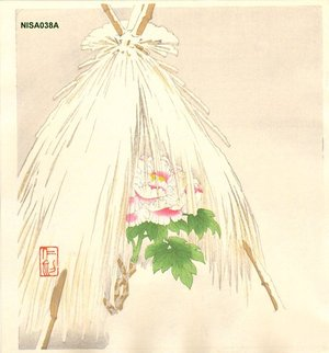 Ito, Nisaburo: Winter Peony - Asian Collection Internet Auction
