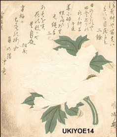 Torii Kiyomine: Peony with blind printing - Asian Collection Internet Auction