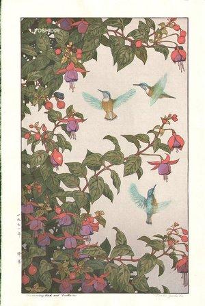 吉田遠志: Hummingbird and Fushsia - Asian Collection Internet Auction
