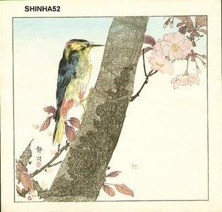 静湖: Woodpecker - Asian Collection Internet Auction