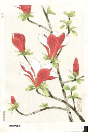 Ito, Nisaburo: Magnolia - Asian Collection Internet Auction