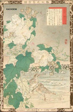 Kono Bairei: Hibiscus and shorebirds - Asian Collection Internet Auction