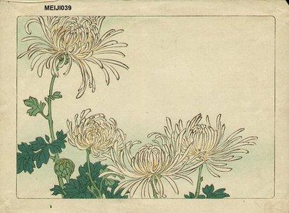 柴田是眞: Floral - Asian Collection Internet Auction