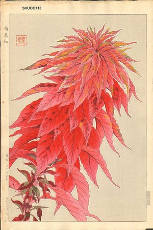 Kawarazaki, Shodo: Red Amaranth - Asian Collection Internet Auction