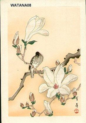 Watanabe, Seitei: Bird and magnolia - Asian Collection Internet Auction