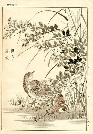 Kono Bairei: Sparrows - Asian Collection Internet Auction