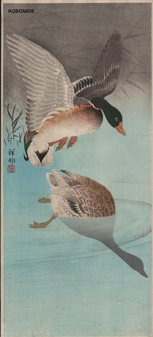 Shoson Ohara: Two mallards in marsh - Asian Collection Internet Auction