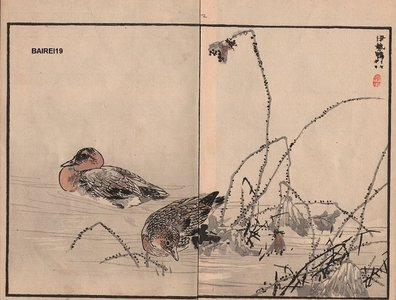 幸野楳嶺: Ducks, two album pages - Asian Collection Internet Auction