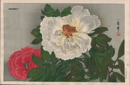 織田一磨: Peonies - Asian Collection Internet Auction