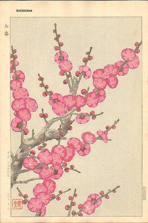 Kawarazaki, Shodo: Red Plum Blossoms - Asian Collection Internet Auction