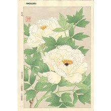 Kawarazaki, Shodo: Tree peony - Asian Collection Internet Auction